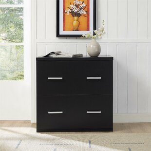 Ebern Designs Canvey 2 Drawer Lateral File Cabinet