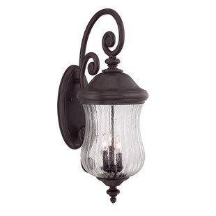 Berwyck 3-Light Outdoor Wall Lantern by Fleur De Lis Living