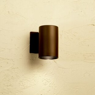Cans and Bullets 1-Light Outdoor Sconce