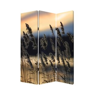 Screen Gems Whisper Reed 3 Panel Room Divider