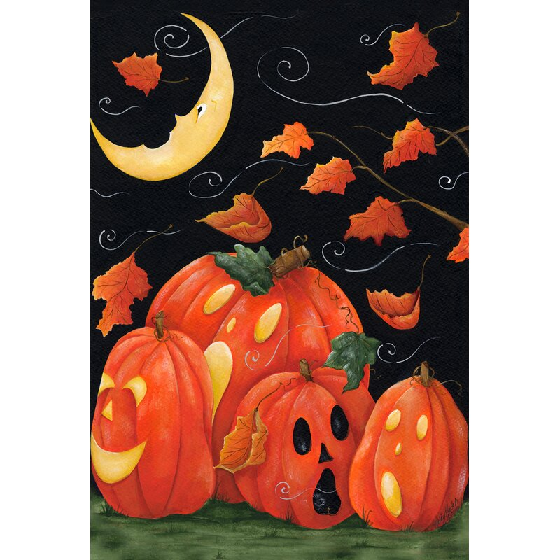 Toland Home Garden Scary Night Polyester 28 X 40 Inch House Flag Reviews Wayfair