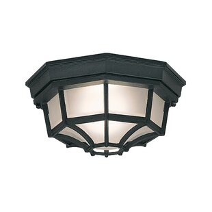 Slusser 1-Light Flush Mount