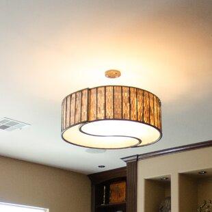 Varaluz Affinity 4-Light Pendant