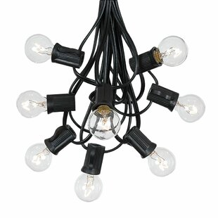 Price comparison Rye Outdoor Patio Bulbs 25 Globe String Lights By The Holiday Aisle
