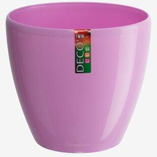 Self Watering Violet Pots | Wayfair
