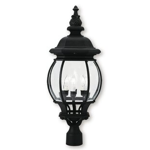 Kelly Outdoor 4-Light Lantern Head by Darby Home Co