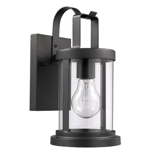Mazelina Transitional Textured Outdoor Wall Lantern