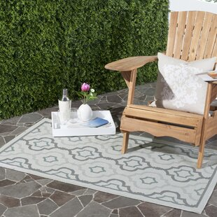 Driffield Light Gray/Anthracite Indoor/Outdoor Area Rug