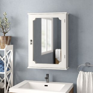 Allan 48cm X 66cm Surface Mount Mirror Cabinet By Three Posts