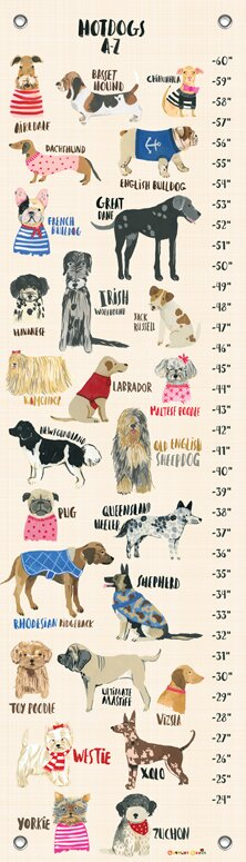 Davis Hot Dogs Canvas Growth Chart Joss Main