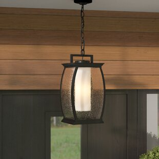 Oakdene 1-Light Outdoor Ha..