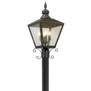 Darby Home Co Sybil Outdoor 4-Light Lantern Head