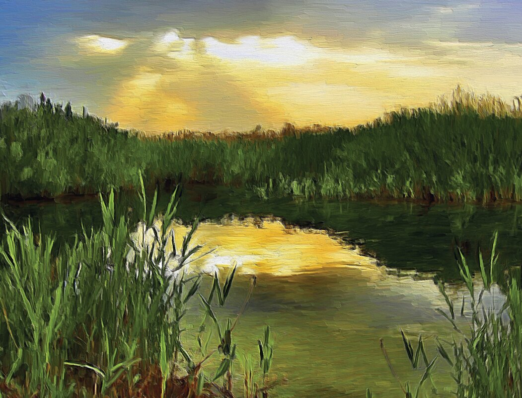 Jp london oil paint pond reeds meadow at dusk 4 39 x 36 for Pond reeds for sale