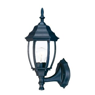 Drumkeeran Outdoor Sconce By Astoria Grand Outdoor Lighting
