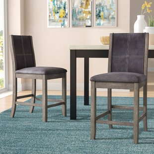 Christian Dining Chair (Set of 2) Ivy Bronx