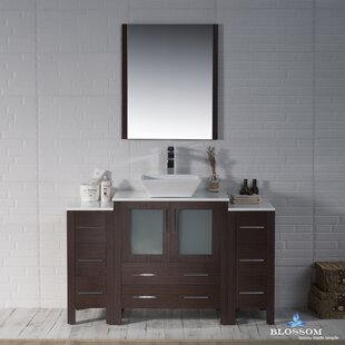 Mance 53 Single Bathroom Vanity Set with Mirror