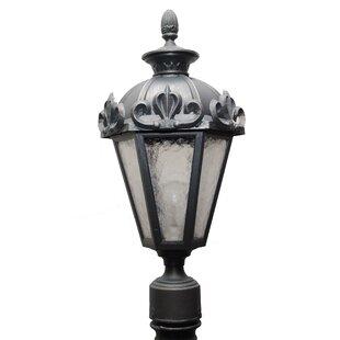 Alcott Hill Petrey 1 Light 21