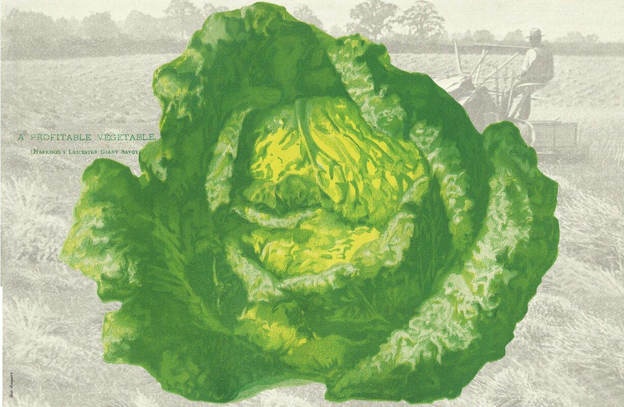Lettuce Placemat