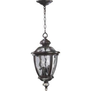 Astoria Grand Schuster 3-Light Outdoor Pendant