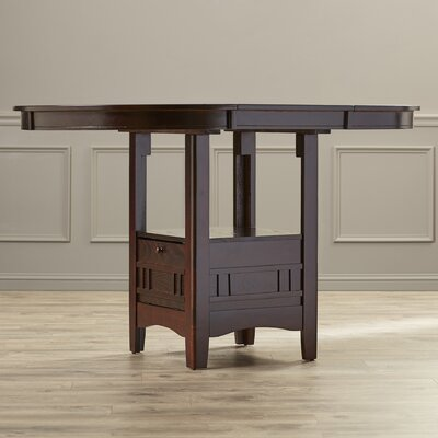 Norwalk Counter Height Extendable Dining Table Alcott Hill Finish: Espresso