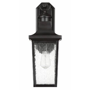 Read Reviews Mikell LED Outdoor Wall Lantern By Bloomsbury Market