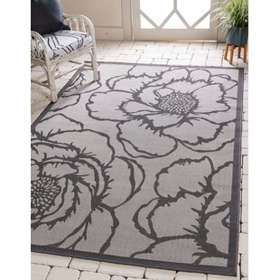 Barriga Gray Indoor/Outdoor Area Rug