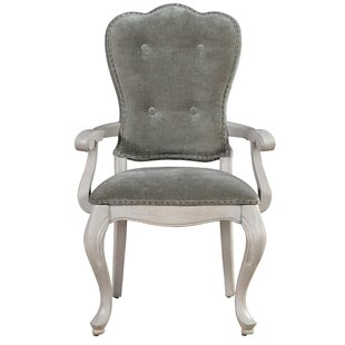 Great choice Effie Arm Chair (Set of 2) by One Allium Way Reviews (2019) & Buyer's Guide