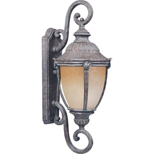 Look for Castres 1-Light Outdoor Wall Lantern By One Allium Way