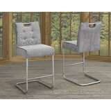 Belfrey 24'' Counter Stool (Set of 2) by Orren Ellis