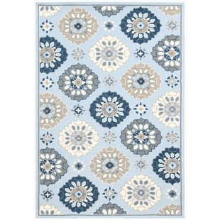 New Britain Multi-purpose Light Blue Indoor/Outdoor Area Rug