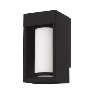 Ivy Bronx Brookshire Outdoor Wall Lantern