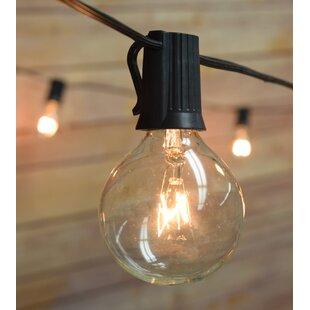 The Paper Lantern Store 50-Light 51 ft. Globe String Light