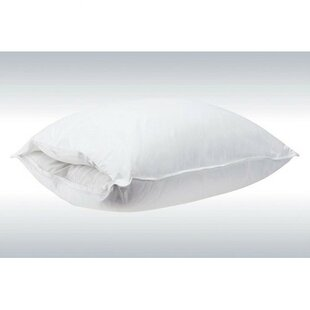 Gilyard Interchangeable Core Pillow (Set of 2)