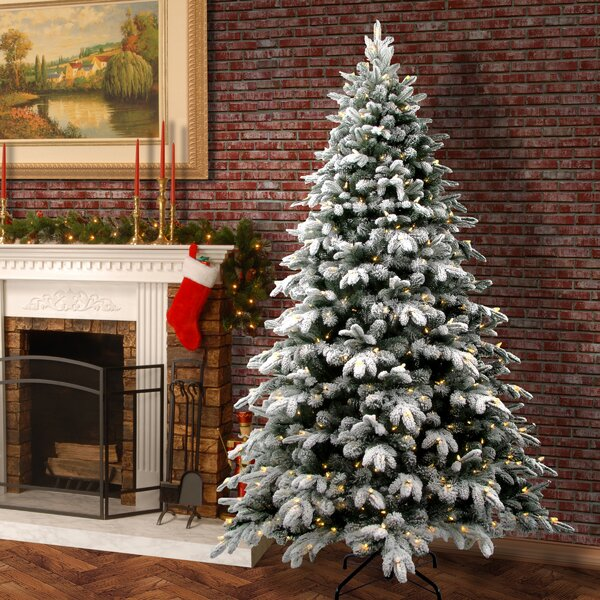 The Holiday Aisle Snowy Avalanche 7 5 White Green Fir Trees Artificial Christmas Tree With Led Colored And Lights Reviews Wayfair