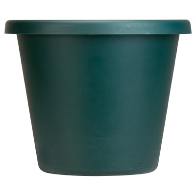Pot Planter (Set of 6) Myers/Akro Mills Color: Evergreen, Size: 16.25'' H x 20'' W x 20 D