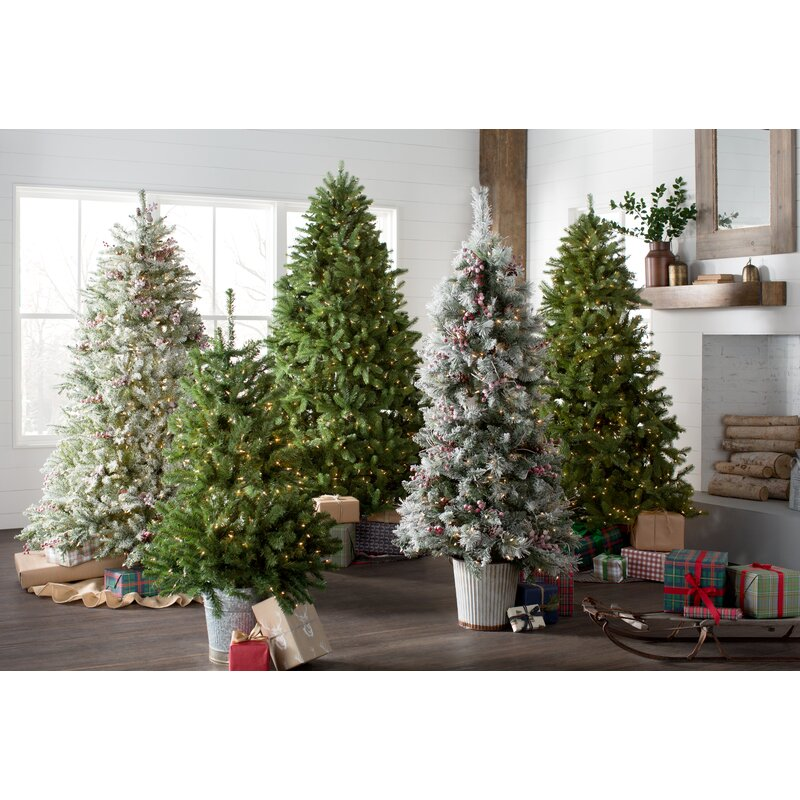 White Fir Christmas Tree: Snowy Frosted Green/White Fir Artificial Christmas Tree