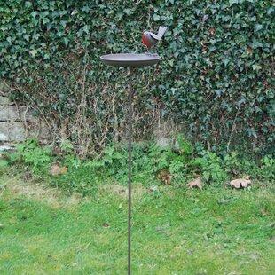 Robin Birdbath With Stake Image
