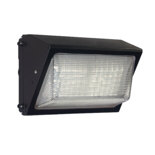 Lumight Falcon 45-Watt LED Dusk to Dawn O..