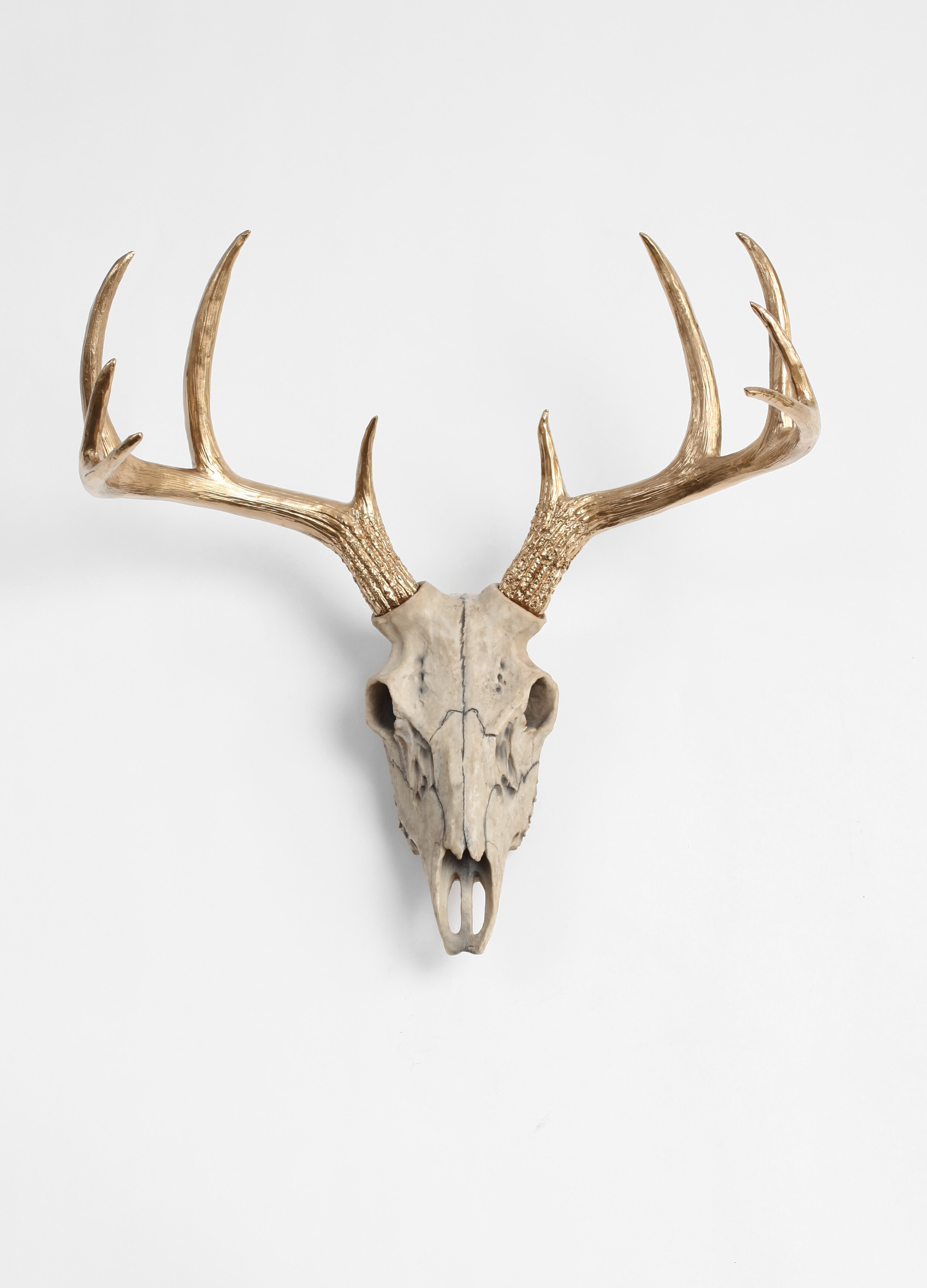 Union Rustic Natural Deer Skull With