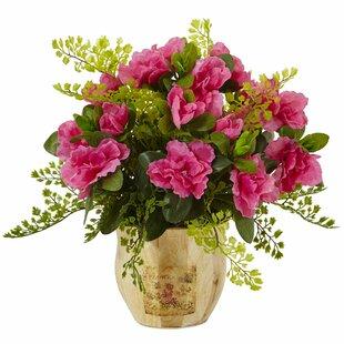 Azalea/Maiden Floral Arrangements in Planter