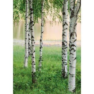Nordic Forest 254cm x 183cm 4 Piece Wallpaper Panel by East Urban Home
