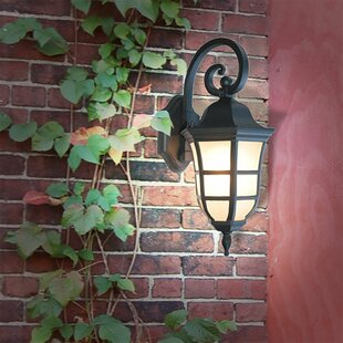 Compare Le Noir 1-Light Outdoor Wall Lantern By eTopLighting