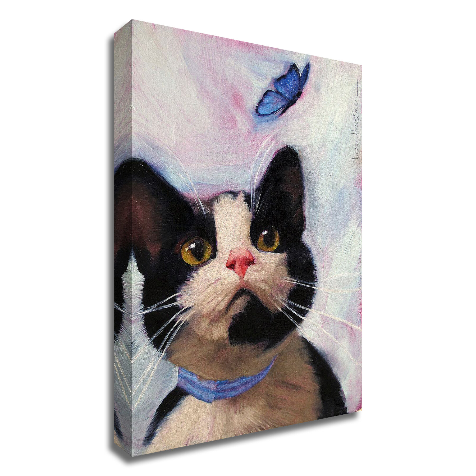 Wayfair Cat Gallery Wrapped Canvas Wall Art You Ll Love In 2021