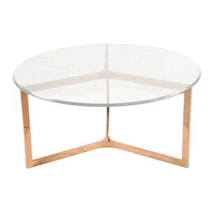 https://secure.img1-fg.wfcdn.com/im/68461291/resize-h310-w310%5Ecompr-r85/3538/35389754/ziegler-coffee-table.jpg