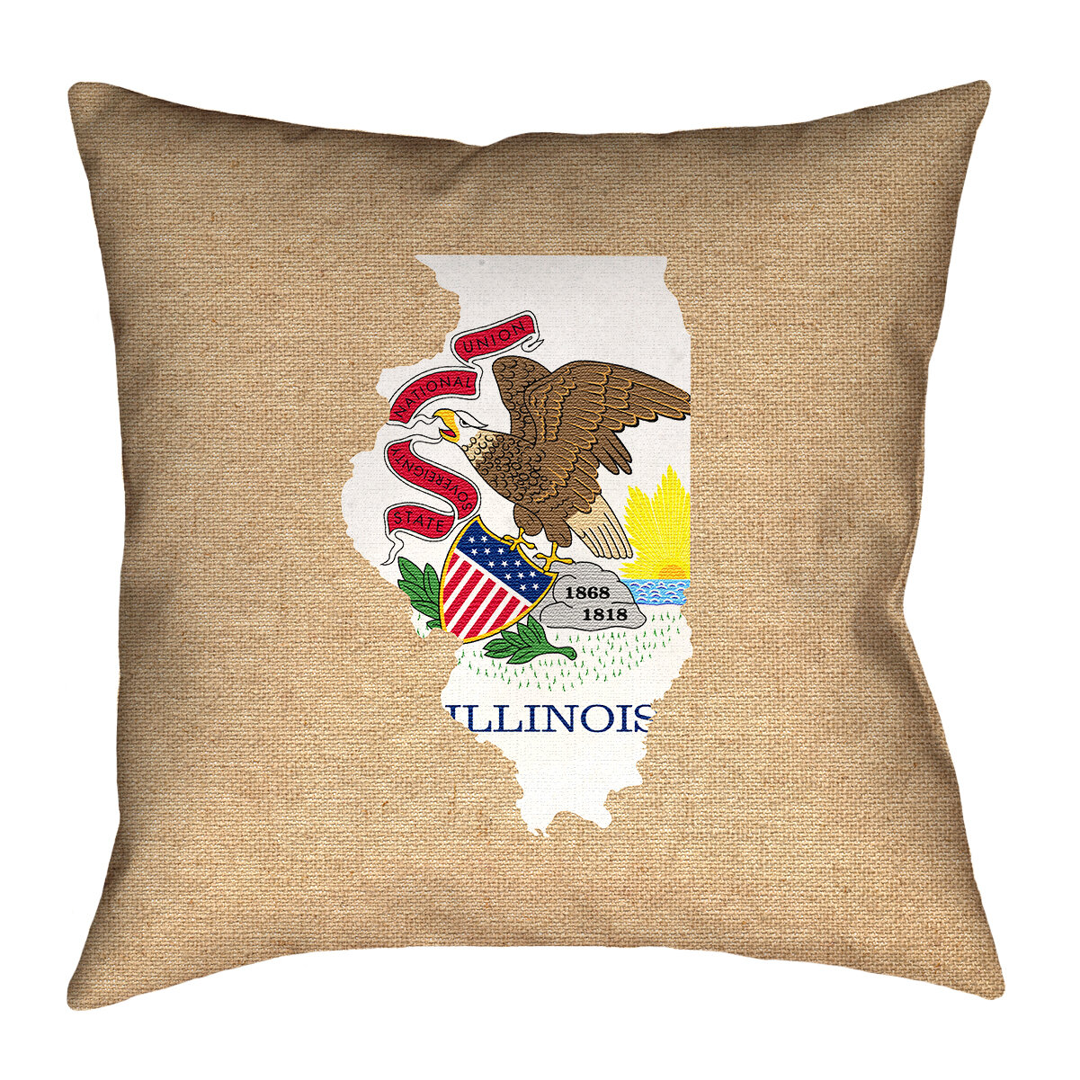 Ebern Designs Fawcett Illinois Flag Black 28 X 28 Floor Pillows Double Sided Print With Concealed Zipper Insert In Faux Suede Double Sided Print Pillow Cover Wayfair