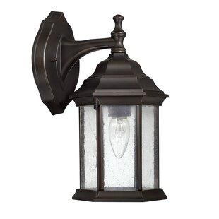 Hearne 1-Light Outdoor Wall Lantern