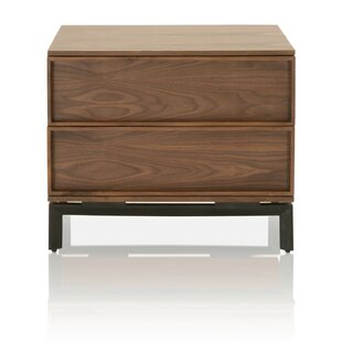 Brayden Studio Deshazo 2 Drawer Nightstand