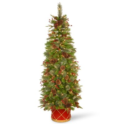 Potted Christmas Trees You Ll Love In 2019 Wayfair
