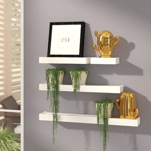 4 Piece Floating Wall Shelf Set by Brayden Studio