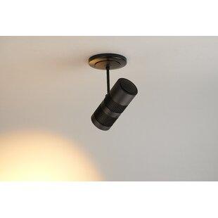 Cushman 12-Watt LED Outdoor Security Spotlight by Symple Stuff